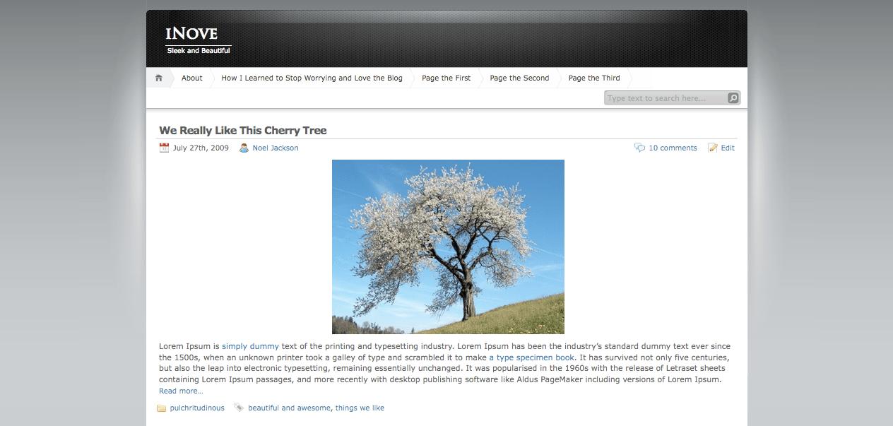 iNOve WordPress theme