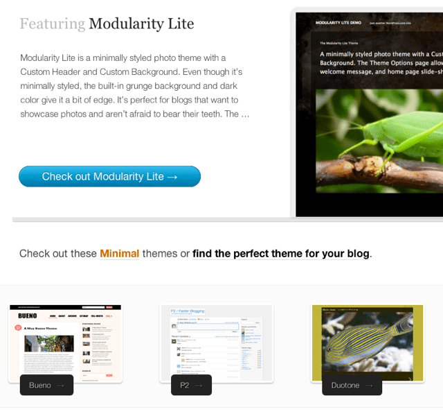 Find the Perfect Theme for Your Blog