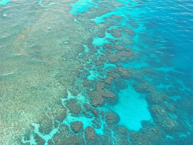 Visit The Great Barrier Reef Before It's Gone Forever!