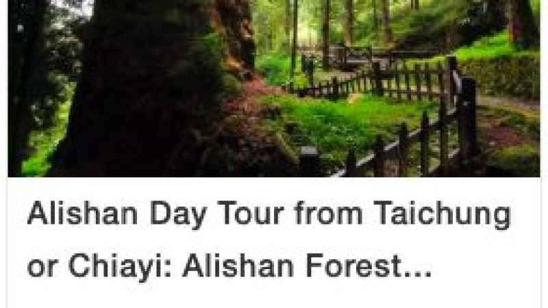 Autumn in Taiwan: Top 5 Places to See Maple Leaves, Alishan