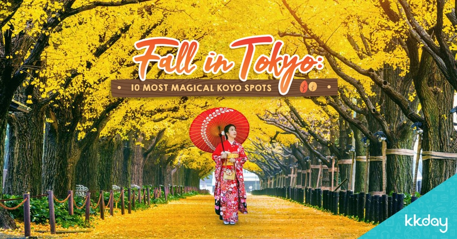 Tokyo Autumn Leaves: 10 Best Koyo Spots for a Beauti-Fall Experience!