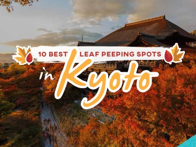 Autumn Colors in Kyoto: 10 Best Leaf Peeping Spots