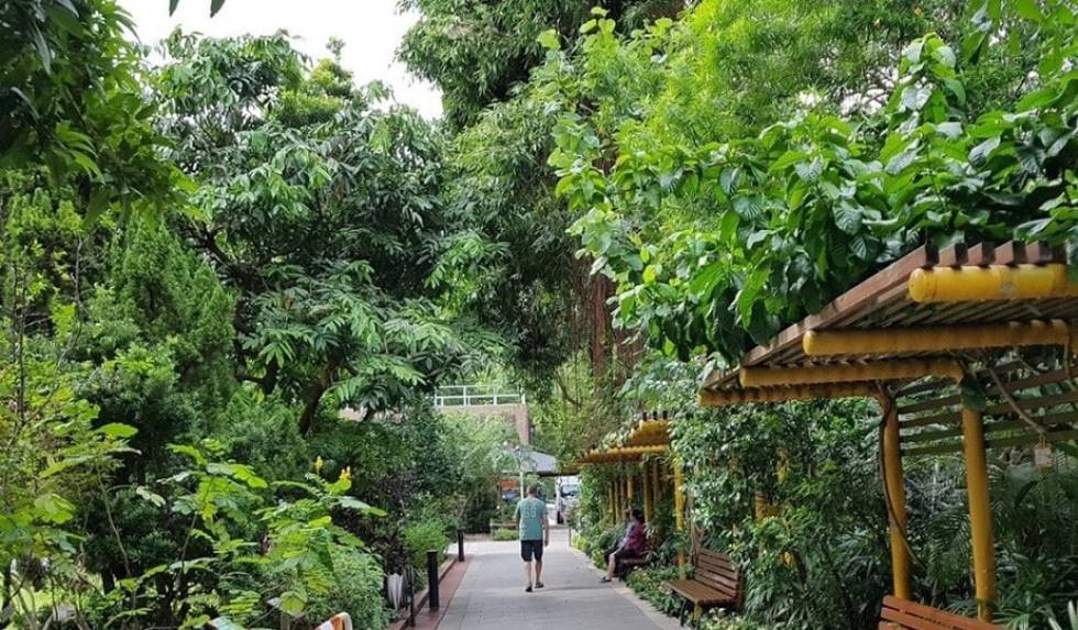 Top Hong Kong Island Attractions: Hong Kong Zoological and Botanical Gardens
