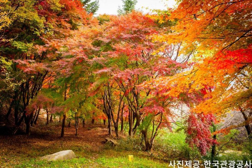 Busan, Korea: Mt. Gayasan in the Fall