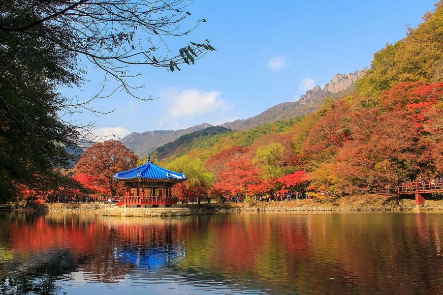 Fall in Korea: Naejangsan National Park