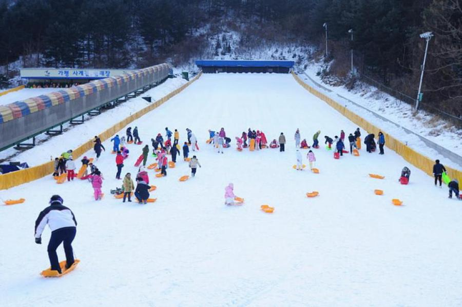 Winter Season: Sledding at Nami Island, Korea