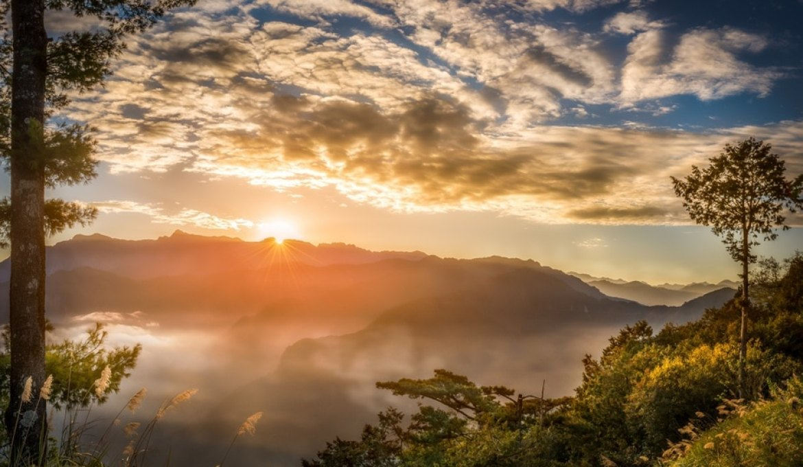 Taiwan Exclusive: Alishan Sunrise Guide to Welcome 2019