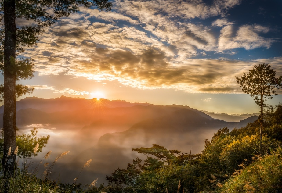 Taiwan Exclusive: Alishan Sunrise Guide to Welcome 2019