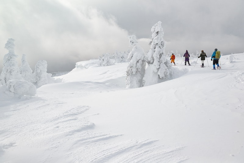 Where to Travel in Japan During Winter: Mount Zao