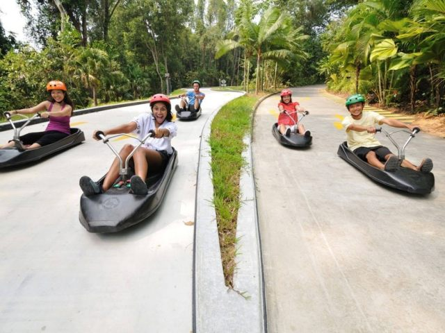 5 Reasons Why Skyline Luge Should Be On Your List of Places to Visit in Singapore