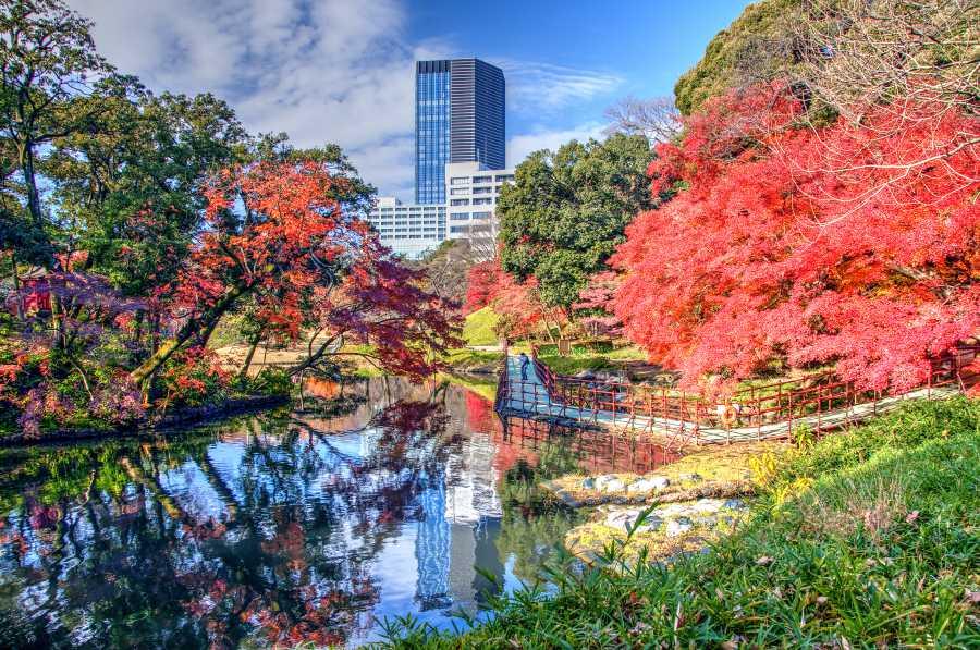 Hamarikyu Gardens (image via Shutterstock)