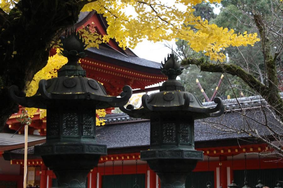Bronze Lanterns at Kasuga Taiga (image via Shutterstock)