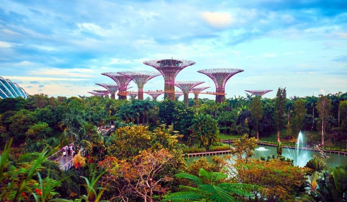 Everything You Need To Know Before Visiting Gardens by the Bay