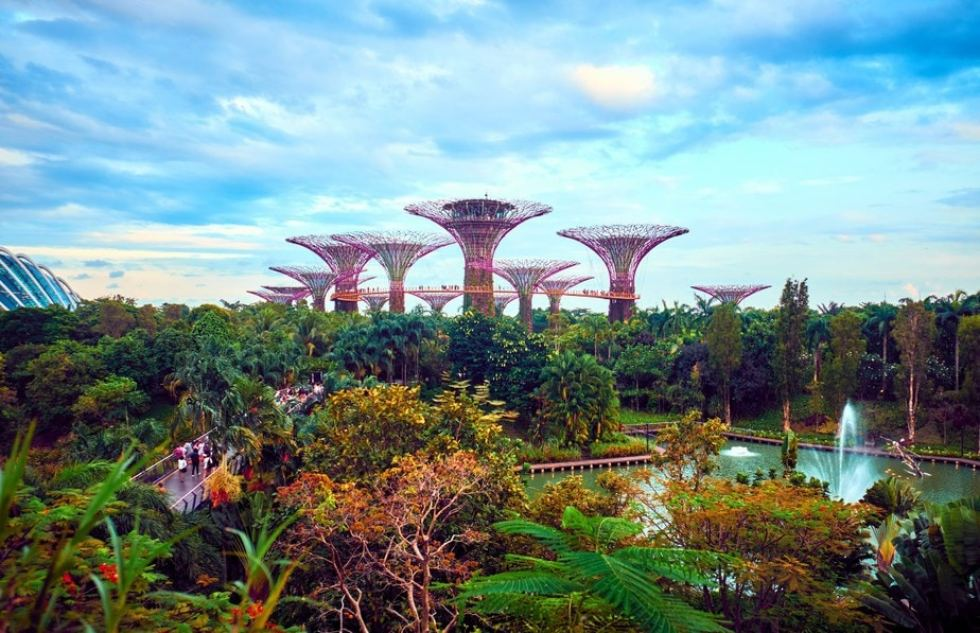 Outdoor Activities Like Gardens By The Bay