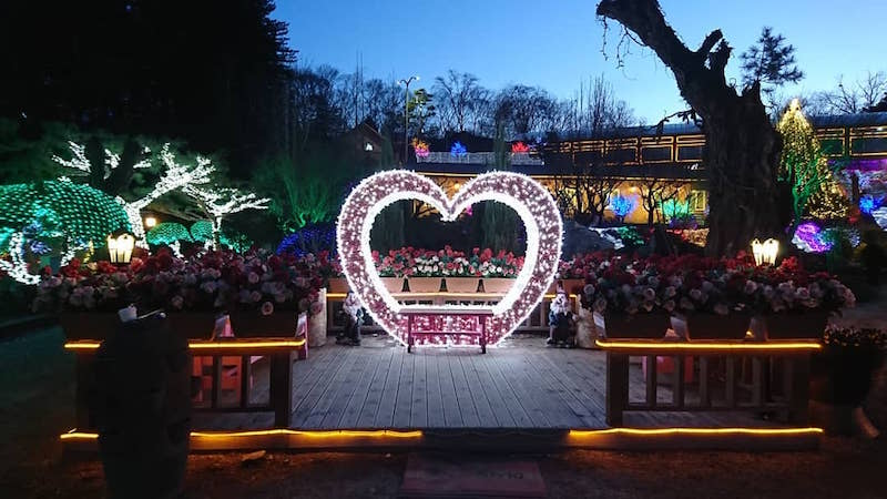 Korea Winter Vacation Idea: Take in the Light Show at Herb Island