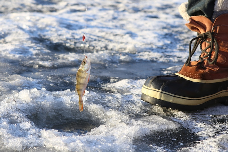 Korea Winter Vacation Idea: Attend an Ice Fishing and Snow Festival
