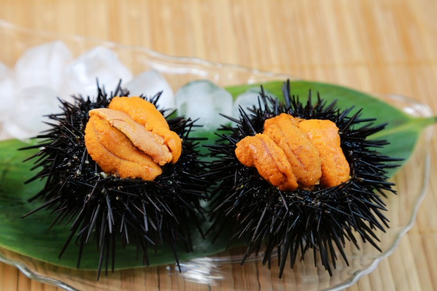 Uni - Sea Urchin Gonads