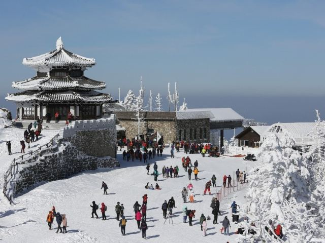 Winter in South Korea: Survival Tips for The First Timer