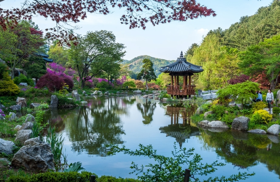 Most Beautiful Spring Gardens You Can Visit in South Korea