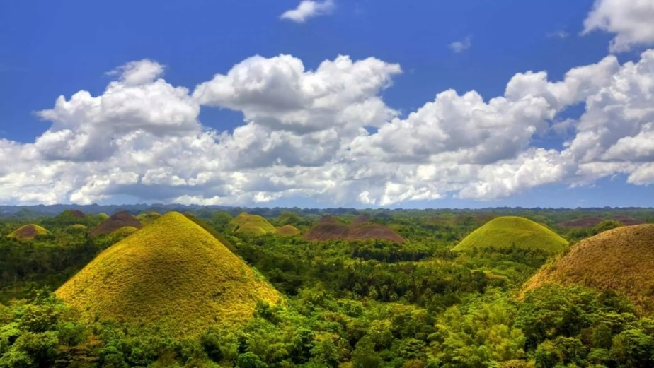 A Detailed Guide To Traveling To Bohol In 2021