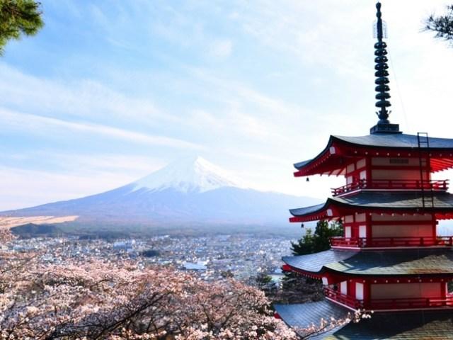 Hanami Guide: 8 Must Visit Sakura Sites in and Around Tokyo