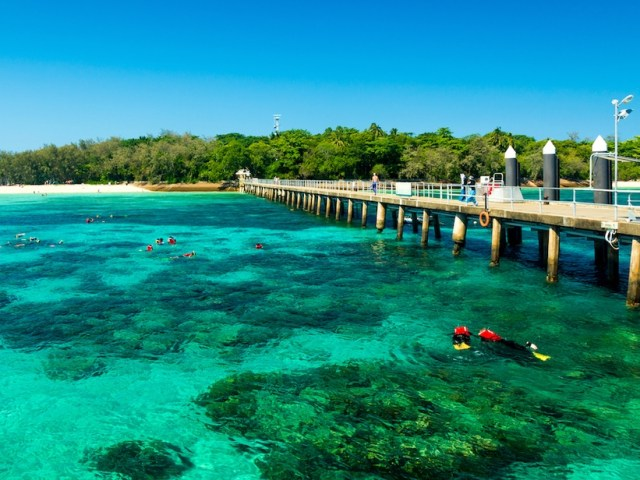 5 Great Barrier Reef Tours to Cross Off Your Bucketlist