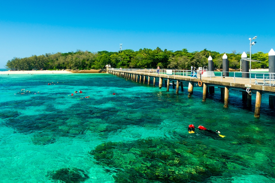 5 Great Barrier Reef Tours