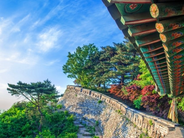 Top Spring Things to Do in Korea