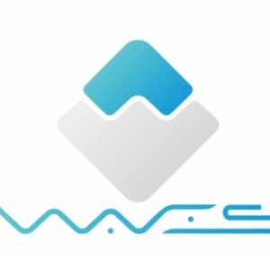 What is Cryptographic Asset (Virtual Currency) Waves? Intro to its Features and Prospects!!