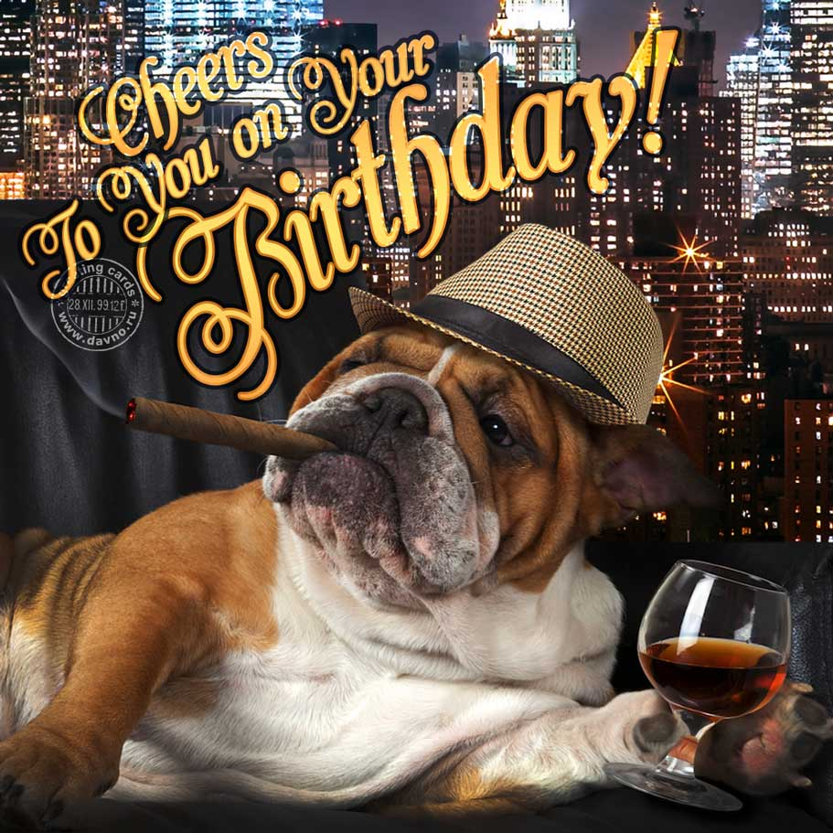 Cheers To You On Your Birthday Download On Davno
