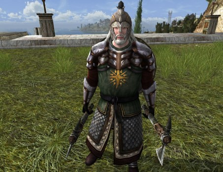 Rohirrim Knight Property Guard