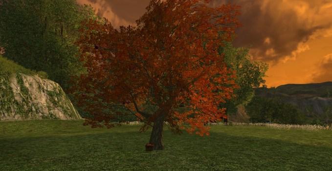 Autumnal Apple Tree
