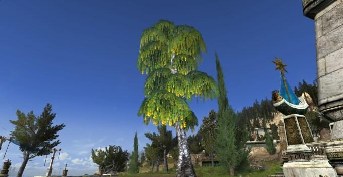 Culumalda Tree