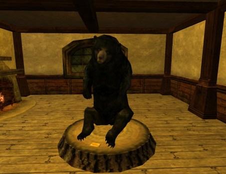 Black Bear Trophy