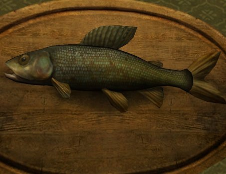 Gleaming Grayling Trophy