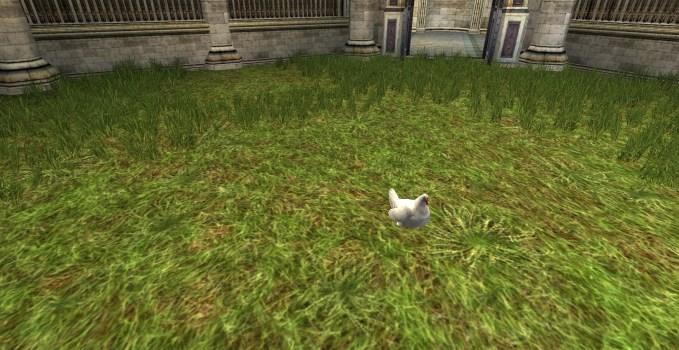 White Lawn Chicken