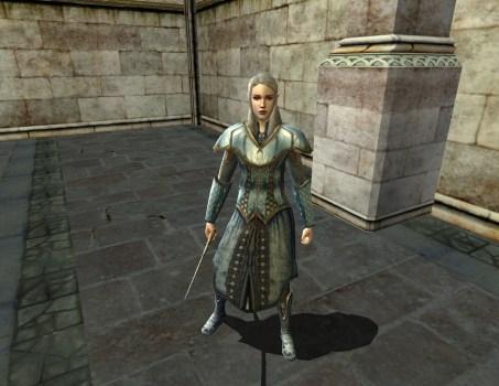 High Elf Visitor – Property Guard