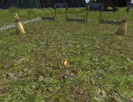 Large Hobnanigans Field with Red Chicken