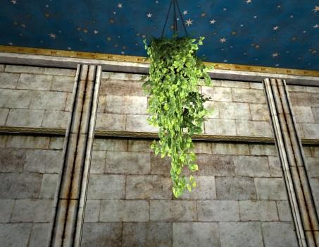 Hanging Pot of Verdant Ivy