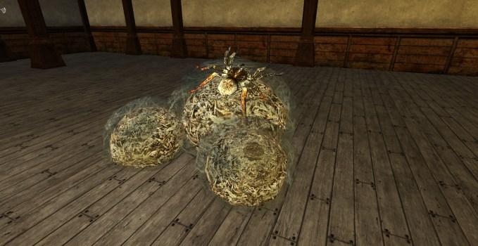 Spider Egg Sacs