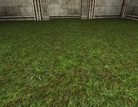 Grass Floor