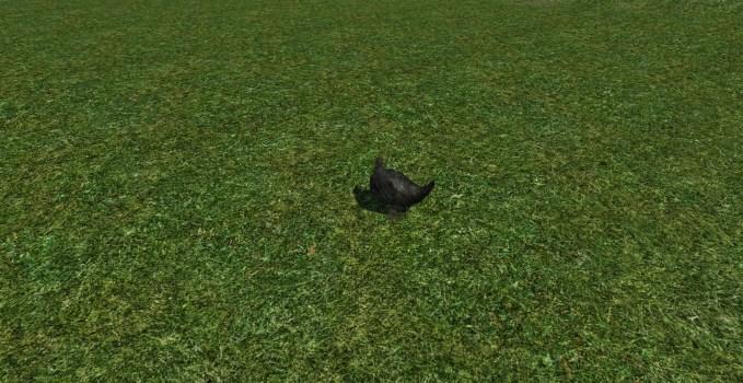 Black-foot Lawn Chicken