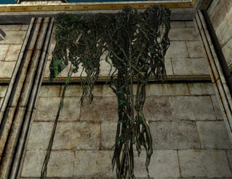 Wall Hanging Vines