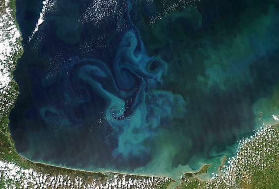 On April 20, 2013, NASA's Aqua satellite captured this true-color image of the dynamic growth of a springtime phytoplankton bloom in the Bay of Biscay, off the coast of France.  Read more about this image here.