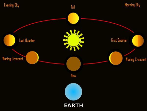 Why Is Venus So Bright Now David Reneke Space and