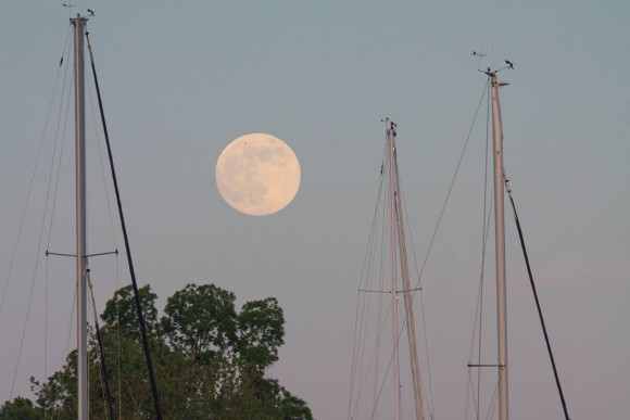 Supermoon rising over Annapolis, MD. 6/22/13.  Photo credit: Kathi D Overton
