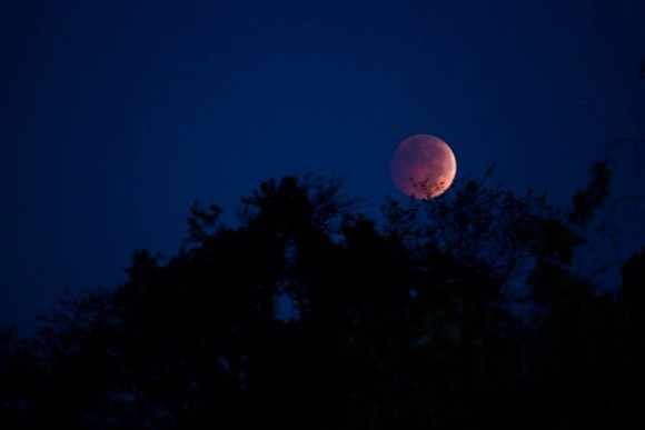 October 8 lunar eclipse as captured by Erin Mohr Bianco in Maryland.