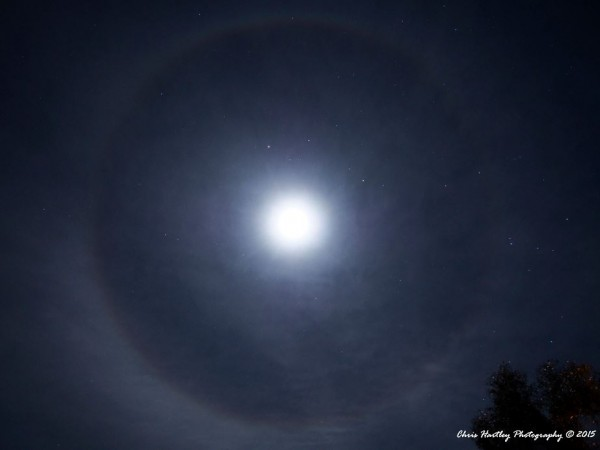 This wonderful shot from Chris Hartley in Queensland, Australia shows the constellation Scorpius - and the planet Saturn - inside a moon halo.  Thanks, Chris!