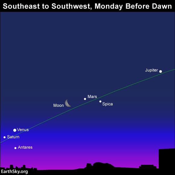 It'll be worth getting up in the wee hours just to see the lineup of planets. The green line depicts the ecliptic - Earth's orbital plane projected onto the dome of sky.