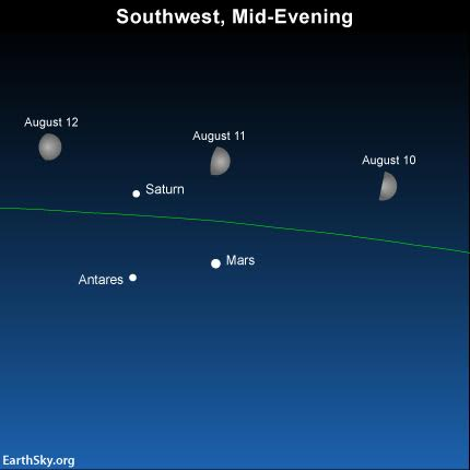 As evening falls on August 10, 11 and 12, the waxing gibbous moon will be shining near planets Mars and Saturn, and the star Antares. The green line depicts the ecliptic - the sun's yearly path and the moon's monthly path in front of the constellations of the Zodiac. The moon will set before the predawn hours on August 11, 12 and 13,  at which time the Perseid meteors  streak the nighttime most abundantly.